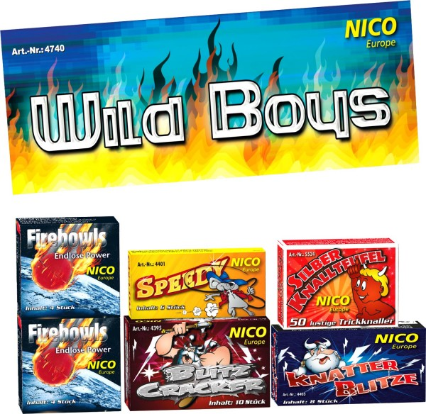 Feuerwerk Hannover - NICO Wild Boys