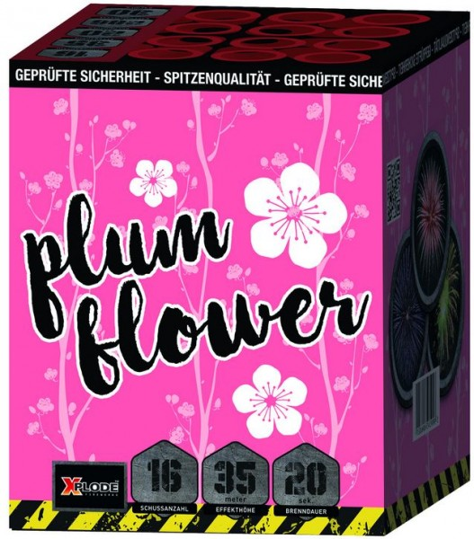 Feuerwerk Hannover - Xplode Plum Flower