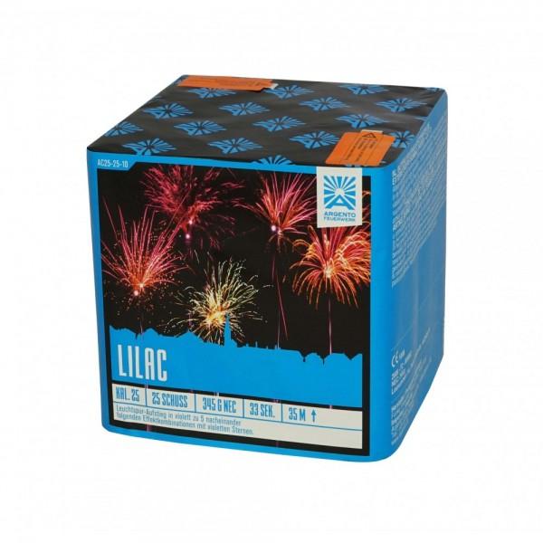 Feuerwerk Hannover - Argento Lilac