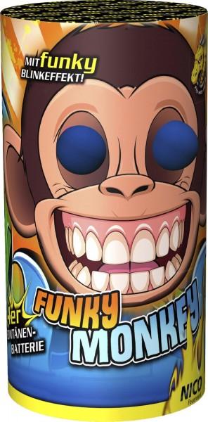 Feuerwerk Hannover - NICO Funky Monkey