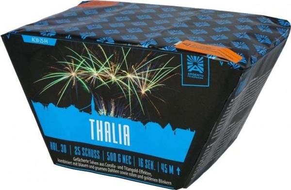 Feuerwerk Hannover - Argento Thalia