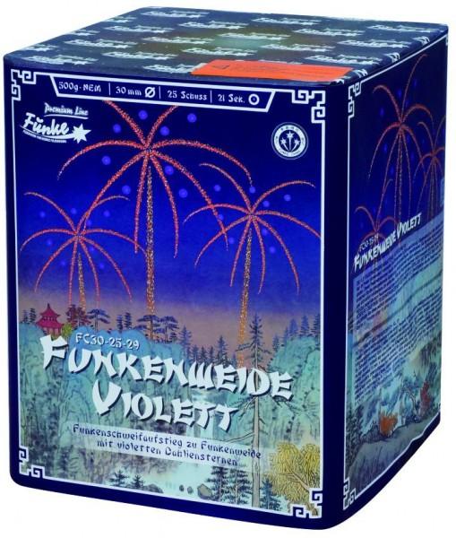 Feuerwerk Hannover - Funke Funkenweide Violett