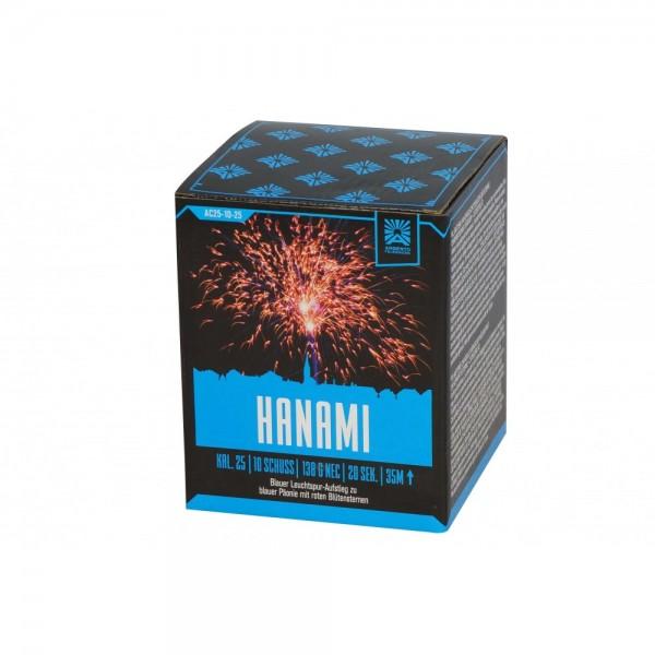 Feuerwerk Hannover - Argento Hanami