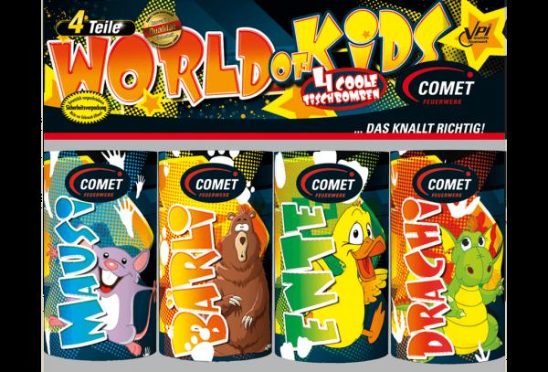 Feuerwerk Hannover - Comet World of Kids